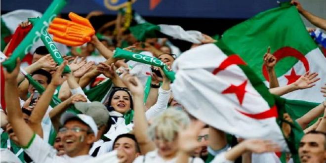 صورة 3000 شاشة عملاقة لمتابعة نهائي الجزائر والسنغال