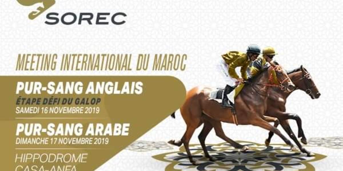صورة الدار البيضاء تحتضن النسخة الخامسة للملتقى الدولي لسباقات الخيول