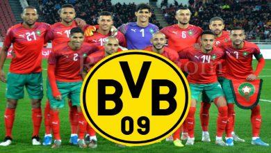 صورة مقابل رحيل هالاند.. بروسيا دورتموند يهتم بنجم المنتخب المغربي